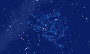 金牛星座和什么星座最佳配对