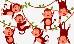 十二生肖猴的故事与传说