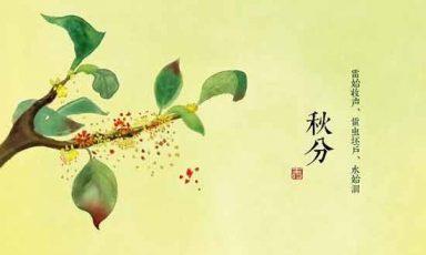 二十四节气之秋分,秋分,秋分日,秋分是什么意思,秋分节气,秋分吃什么,秋分时间