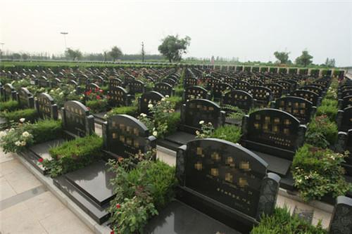 选公墓的宝地
