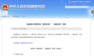 """民政部公布第五批""""离岸社团""""""""山寨社团""""名单"""