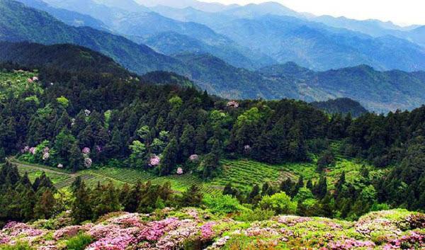 天台山风景